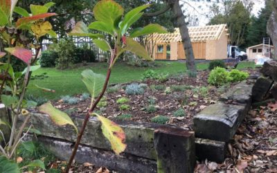 Plantation des premières plantes aromatiques !