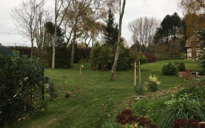 Dernières plantations avant les grands froids