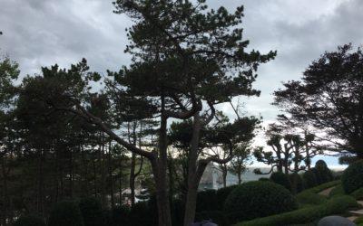Les Jardins d'Etretat sur la falaise