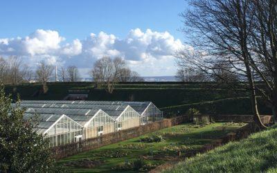 Jardins Suspendus : un jardin botanique remarquable au Havre